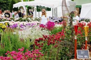 Sommerliche Landpartie: Gartenwelten Wertheim