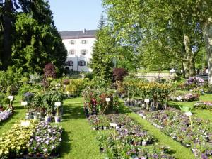 Gartenlust Schloss Eichtersheim