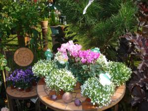 Gartenmesse im Kurpark Osterode