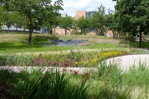 LGA Enzgärten