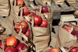 Apfelpfannkuchen - mit Äpfeln aus dem Garten schmeckt er am besten!