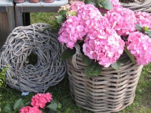 Haaner Gartenlust