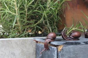 Schneckenbekämpfung: Ein Thema für jeden Gartenbesitzer