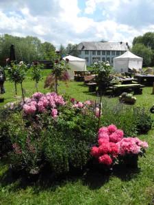 Die GartenLeben Dorenburg findet an Pfingsten statt.