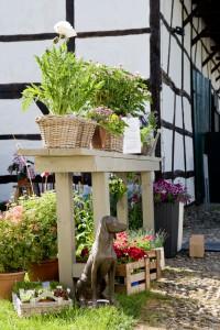 Wunderbare Gartenveranstaltungen im Sommer