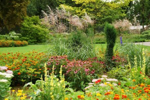 Mit der LGS Dauerkarte: Den Hofgarten der Landesgartenschau Öhringen besuchen