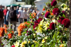 Gartenveranstaltung in Berlin