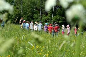 LGS 2016: Grünes Klassenzimmer in Öhringen