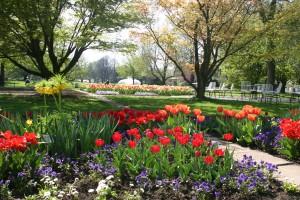 Frühlingsveranstaltung: Du und dein Garten
