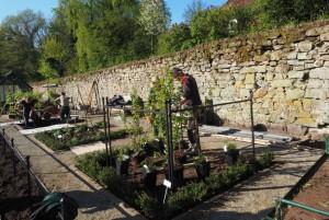 Hier wird ein Paradiesgarten live gepflanzt
