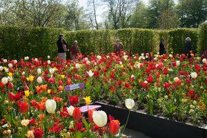 Frühlingsveranstaltung auf Schloss Ippenburg