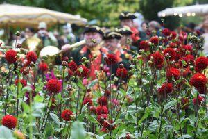 Gartenveranstaltung: Das Fürstliche Gartenfest, Schloss Wolfsgarten